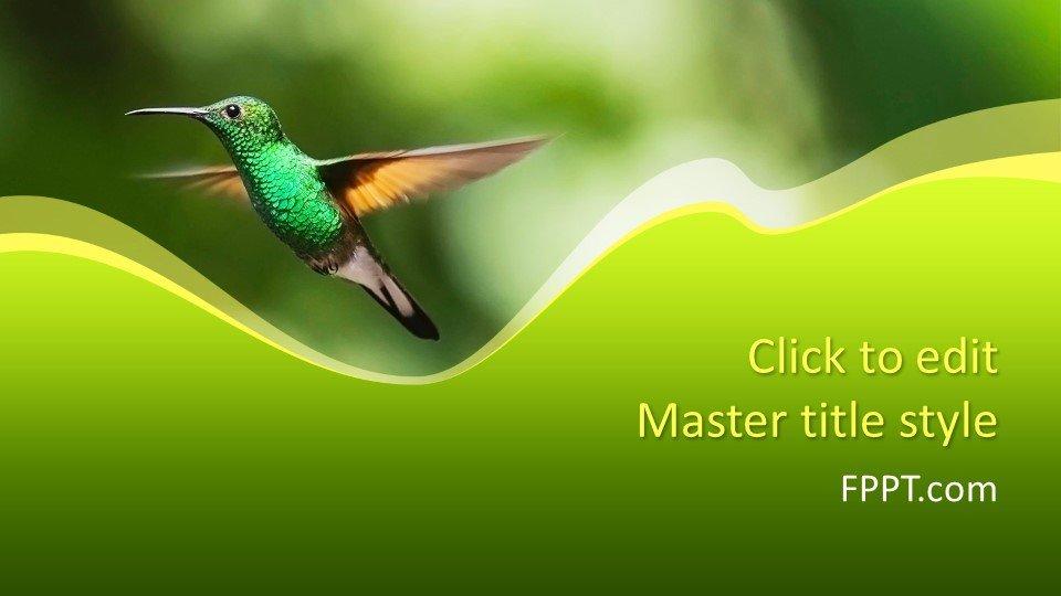 Шаблоны слайдов Powerpoint - Колибри
