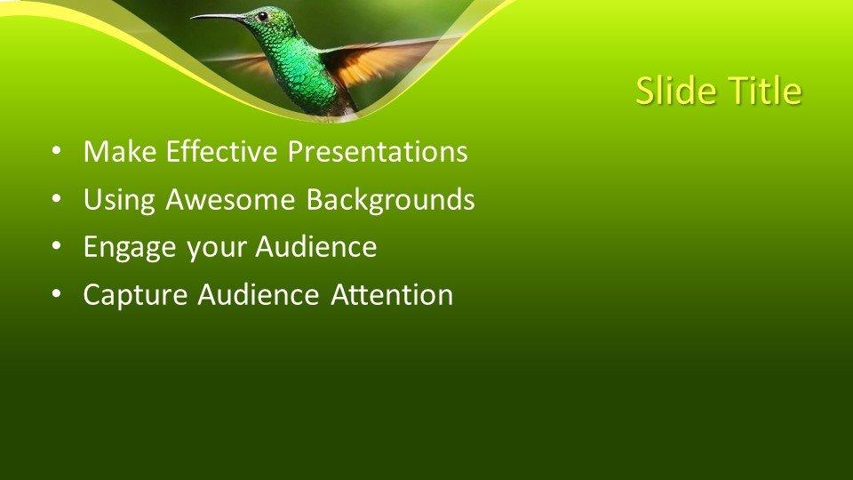 Powerpoint Kolibri2 - Шаблоны слайдов Powerpoint - Колибри