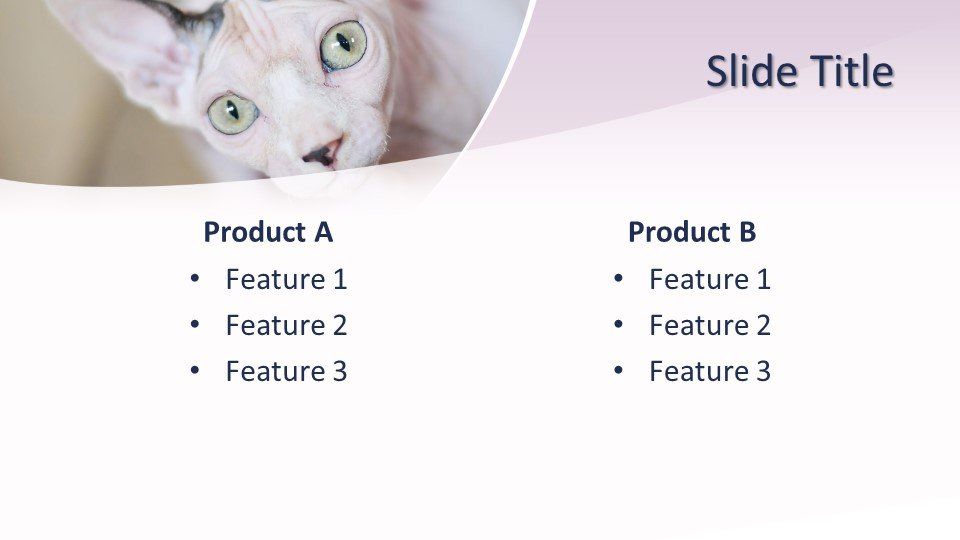 Шаблоны слайдов PowerPoint - Кошка
