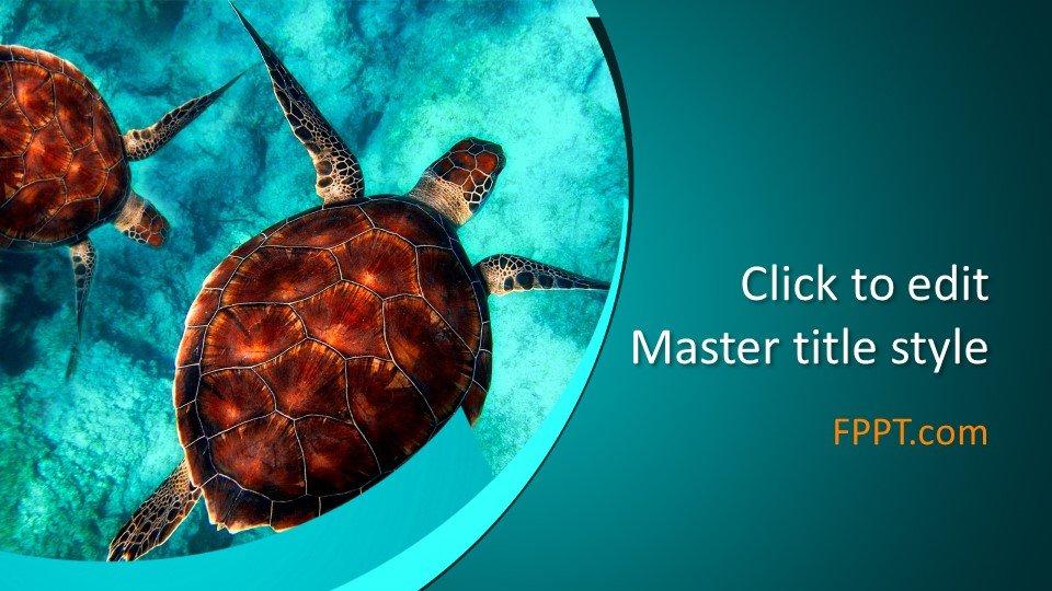 Powerpoint - Морская черепаха