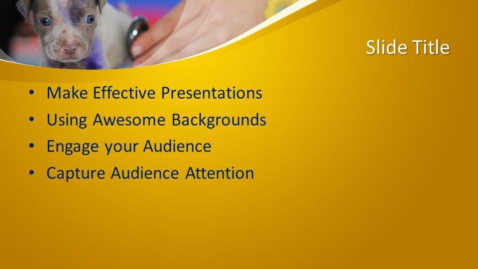 Шаблоны слайдов Powerpoint - Ветеринарный