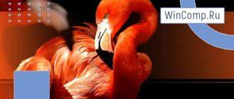 Powerpoint - Фламинго